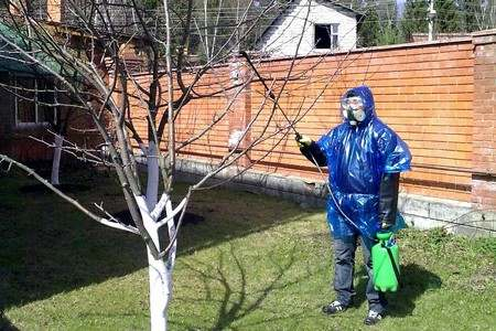 Человек в защитной одежде обрабатывает деревья