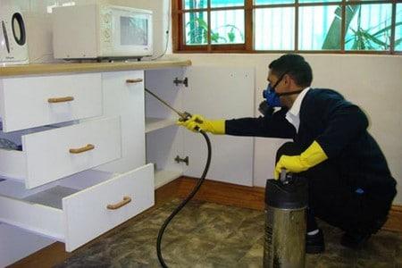 Мужчина опрыскивает мебель на кухне средством от клопов