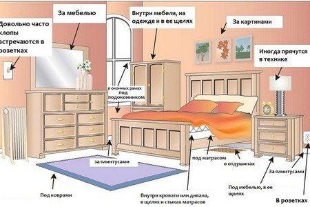 Обозначения мест обитания клопов в комнате