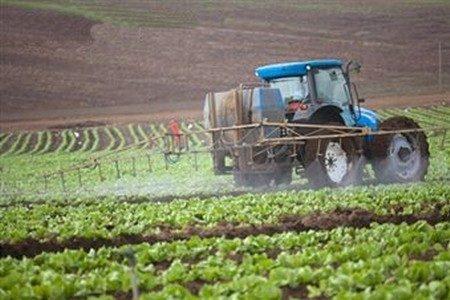 Трактор обрабатывает поле