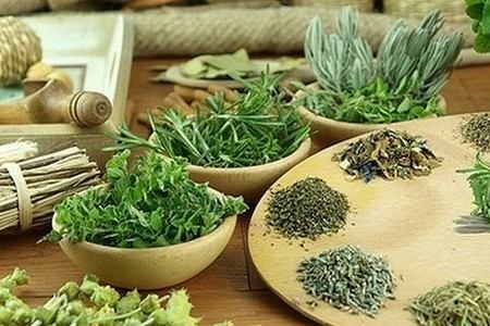 Лечебные травы