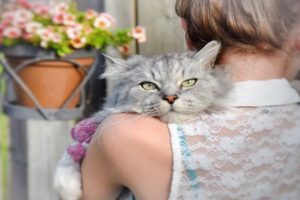 девушка держит кота